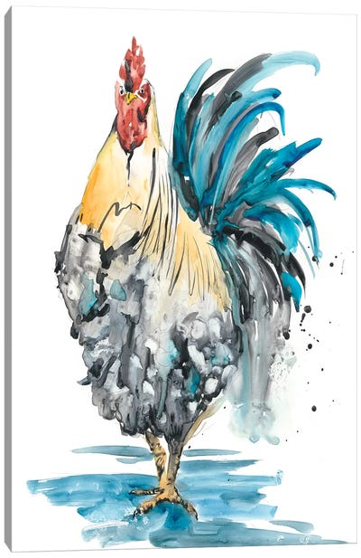 Rooster Splash II Canvas Art Print
