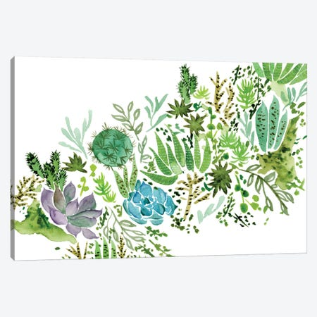 Succulent Field I Canvas Print #WNG249} by Melissa Wang Canvas Wall Art