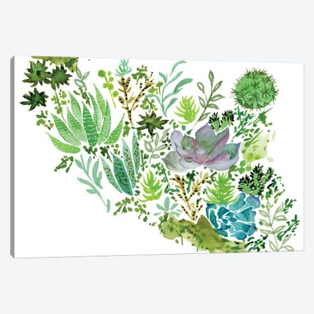 Succulent Field II Canvas Print #WNG250} by Melissa Wang Art Print