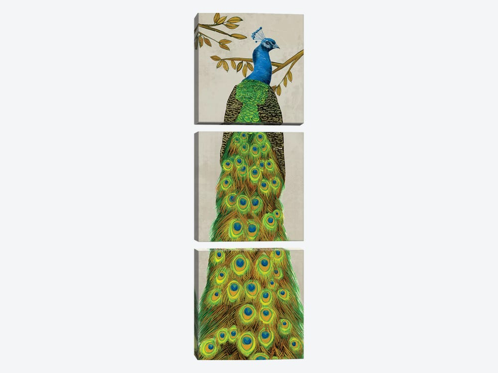 Vintage Peacock I by Melissa Wang 3-piece Canvas Print
