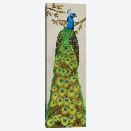 Vintage Peacock I Canvas Print #WNG270} by Melissa Wang Art Print