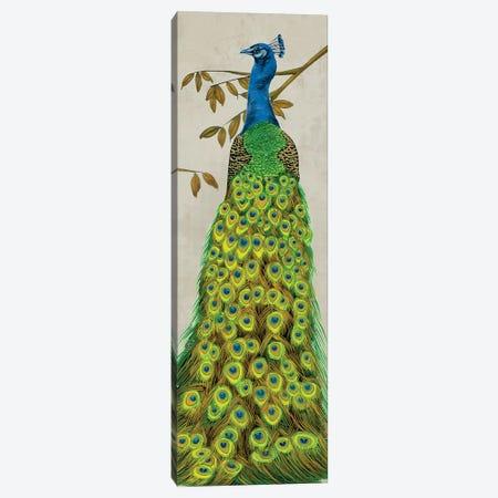 Vintage Peacock II Canvas Print #WNG271} by Melissa Wang Canvas Print