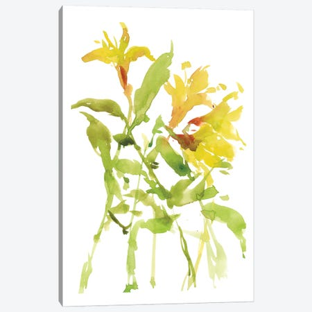 Watercolor Lilies I Canvas Print #WNG276} by Melissa Wang Canvas Artwork