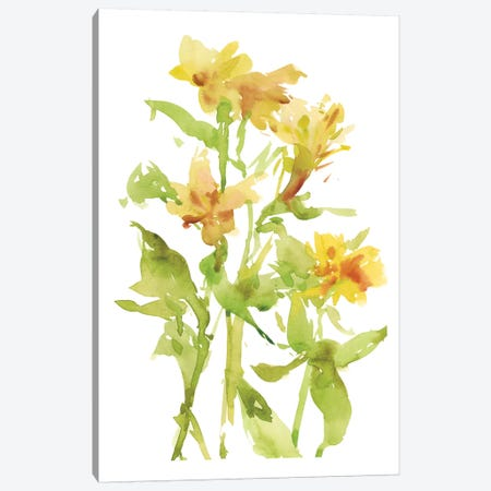 Watercolor Lilies II Canvas Print #WNG277} by Melissa Wang Canvas Wall Art