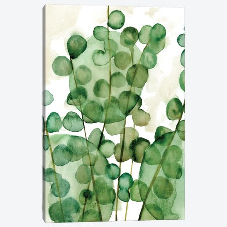 Zanzibar Gem II Canvas Print #WNG281} by Melissa Wang Canvas Art