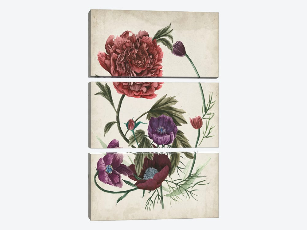 Antique Peony I by Melissa Wang 3-piece Canvas Art