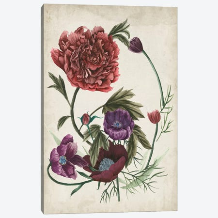 Antique Peony I Canvas Print #WNG284} by Melissa Wang Canvas Art Print