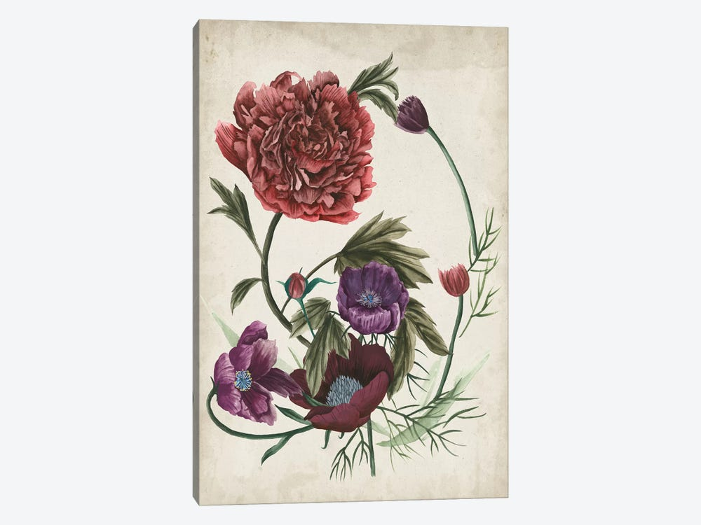 Antique Peony I by Melissa Wang 1-piece Canvas Artwork