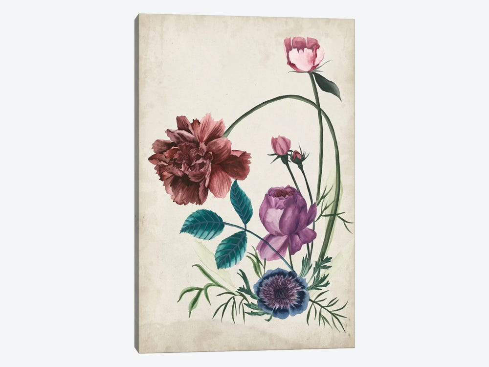Antique Peony II by Melissa Wang 1-piece Art Print