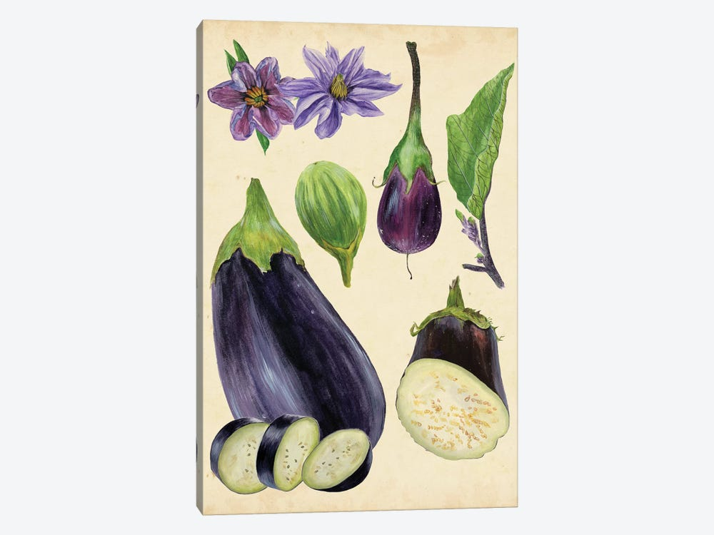 Aubergine Study I by Melissa Wang 1-piece Canvas Artwork