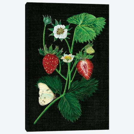 Strawberry Fields I Canvas Print #WNG29} by Melissa Wang Canvas Art Print