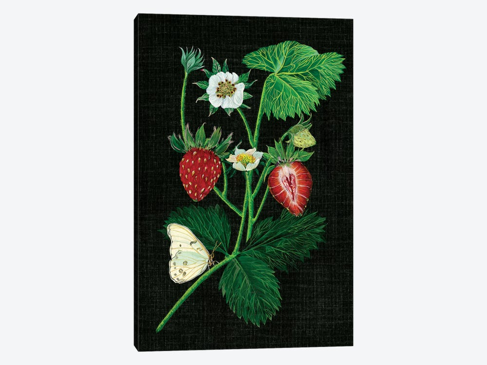 Strawberry Fields I by Melissa Wang 1-piece Canvas Print