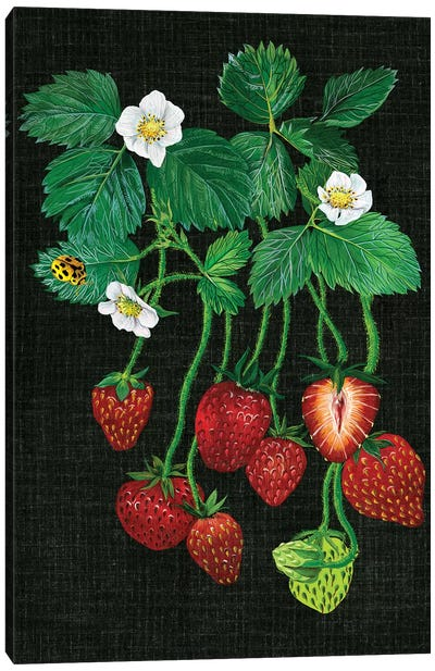 Strawberry Fields II Canvas Print #WNG30