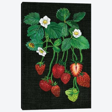 Strawberry Fields II Canvas Print #WNG30} by Melissa Wang Canvas Artwork