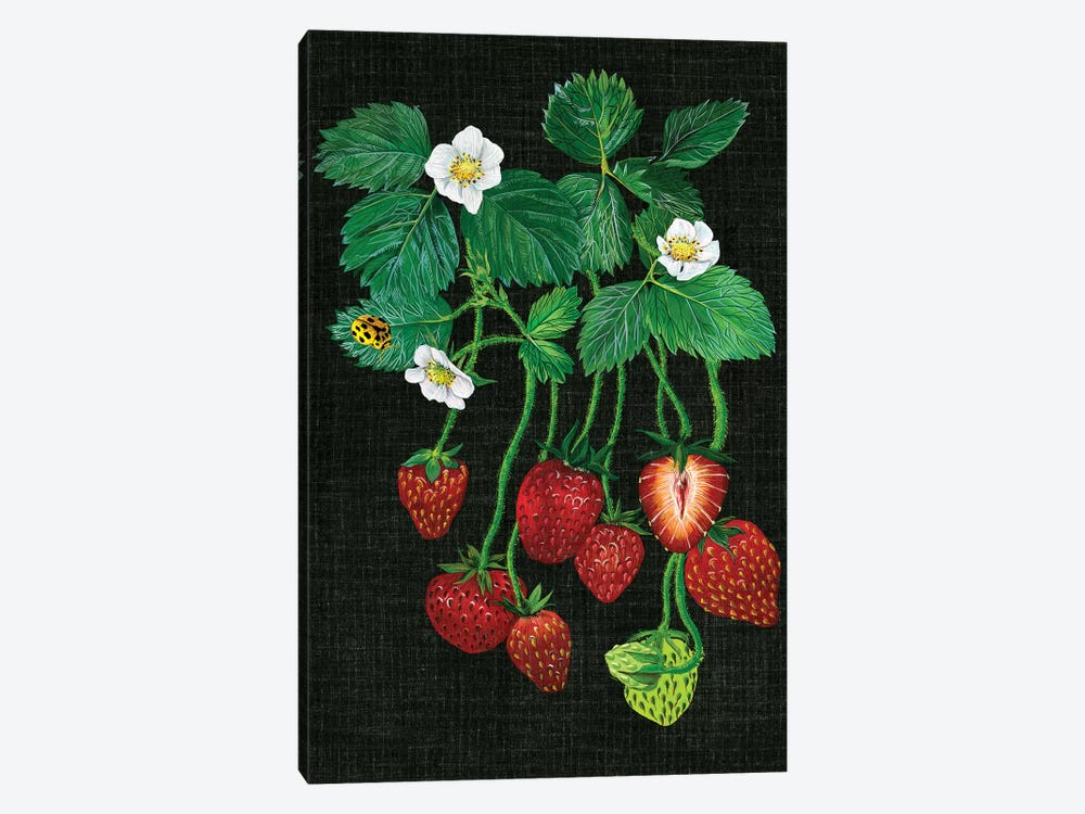 Strawberry Fields II by Melissa Wang 1-piece Canvas Print