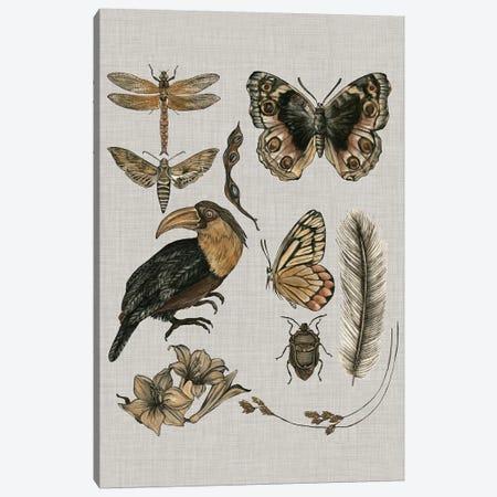 Nature Studies I Canvas Print #WNG320} by Melissa Wang Art Print