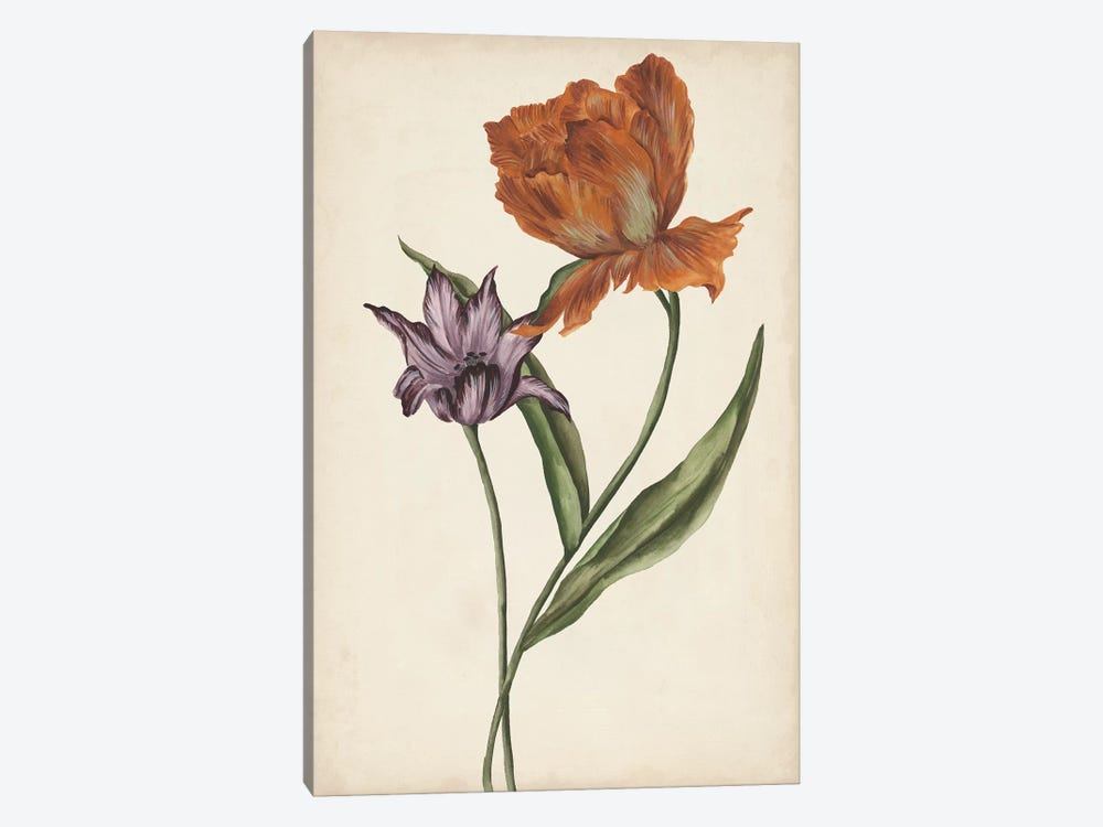 Two Tulips II by Melissa Wang 1-piece Canvas Art