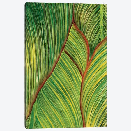 Tropical Crop II Canvas Print #WNG34} by Melissa Wang Canvas Art Print