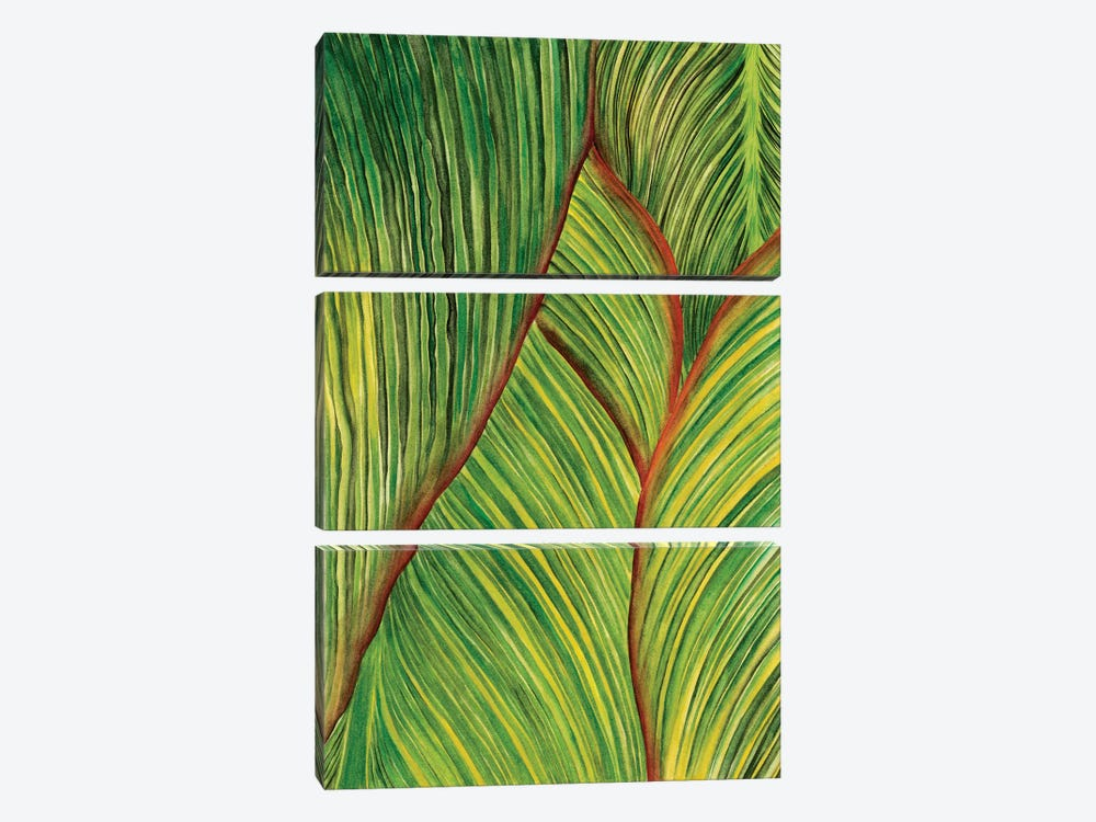 Tropical Crop II by Melissa Wang 3-piece Canvas Art Print