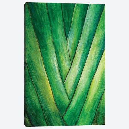 Tropical Crop III Canvas Print #WNG35} by Melissa Wang Art Print