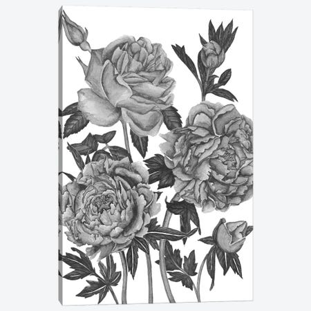 Flowers In Grey VI Canvas Print #WNG363} by Melissa Wang Canvas Print