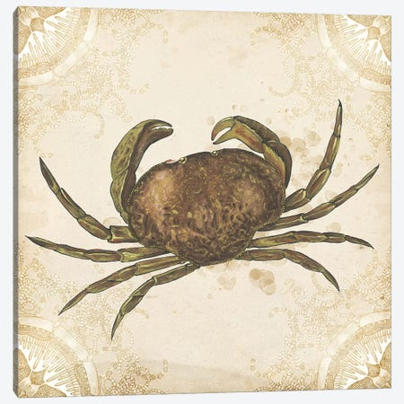 La Mer Shellfish I Canvas Print #WNG366} by Melissa Wang Canvas Art