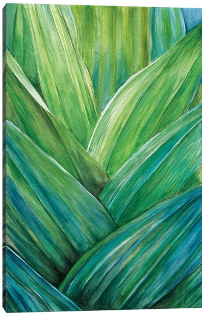 Tropical Crop IV Canvas Art Print