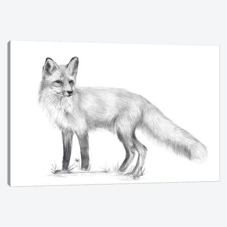 Wildlife Trail I Canvas Print #WNG462} by Melissa Wang Canvas Wall Art