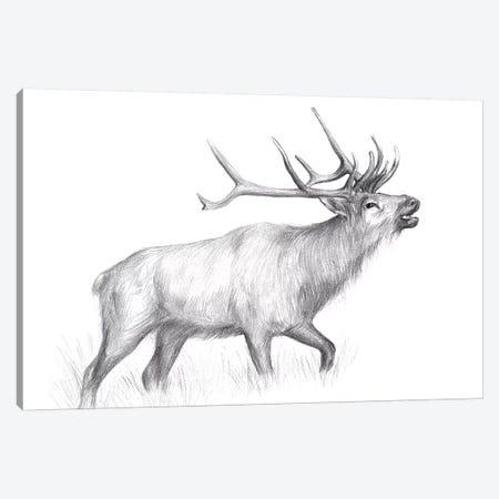 Wildlife Trail II 3-Piece Canvas #WNG463} by Melissa Wang Canvas Wall Art