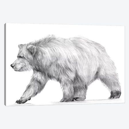 Wildlife Trail III Canvas Print #WNG464} by Melissa Wang Art Print