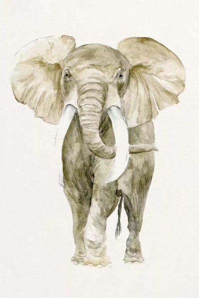 Baby Elephant I Canvas Art Print by Melissa Wang   iCanvas