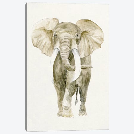Baby Elephant I Canvas Print #WNG51} by Melissa Wang Canvas Art