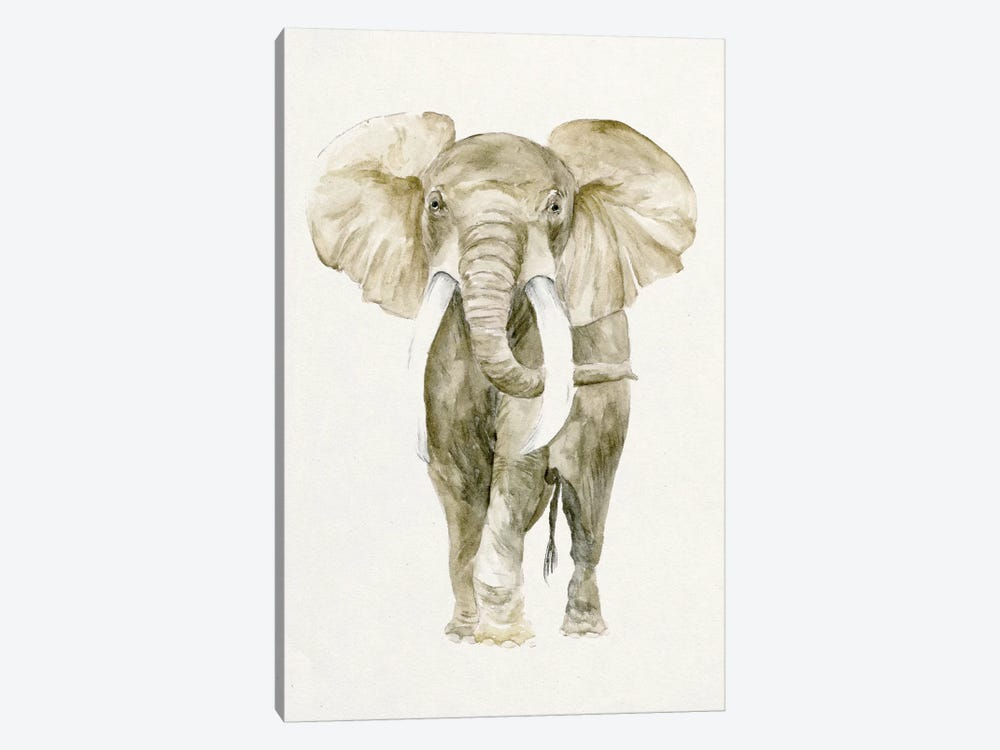 Baby Elephant I by Melissa Wang 1-piece Canvas Artwork