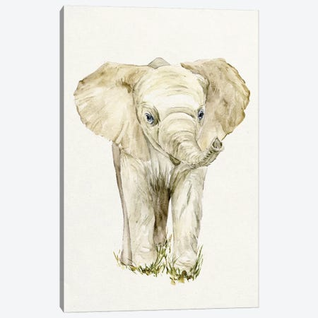 Baby Elephant II Canvas Print #WNG52} by Melissa Wang Canvas Artwork