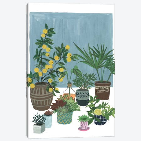 A Portrait Of Plants II Canvas Print #WNG537} by Melissa Wang Canvas Art Print