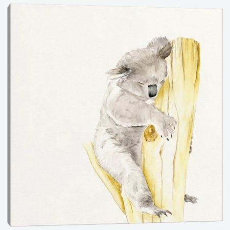 Baby Koala I Canvas Print #WNG53} by Melissa Wang Canvas Wall Art