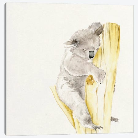 Baby Koala I Canvas Print #WNG53} by Melissa Wang Canvas Wall Art