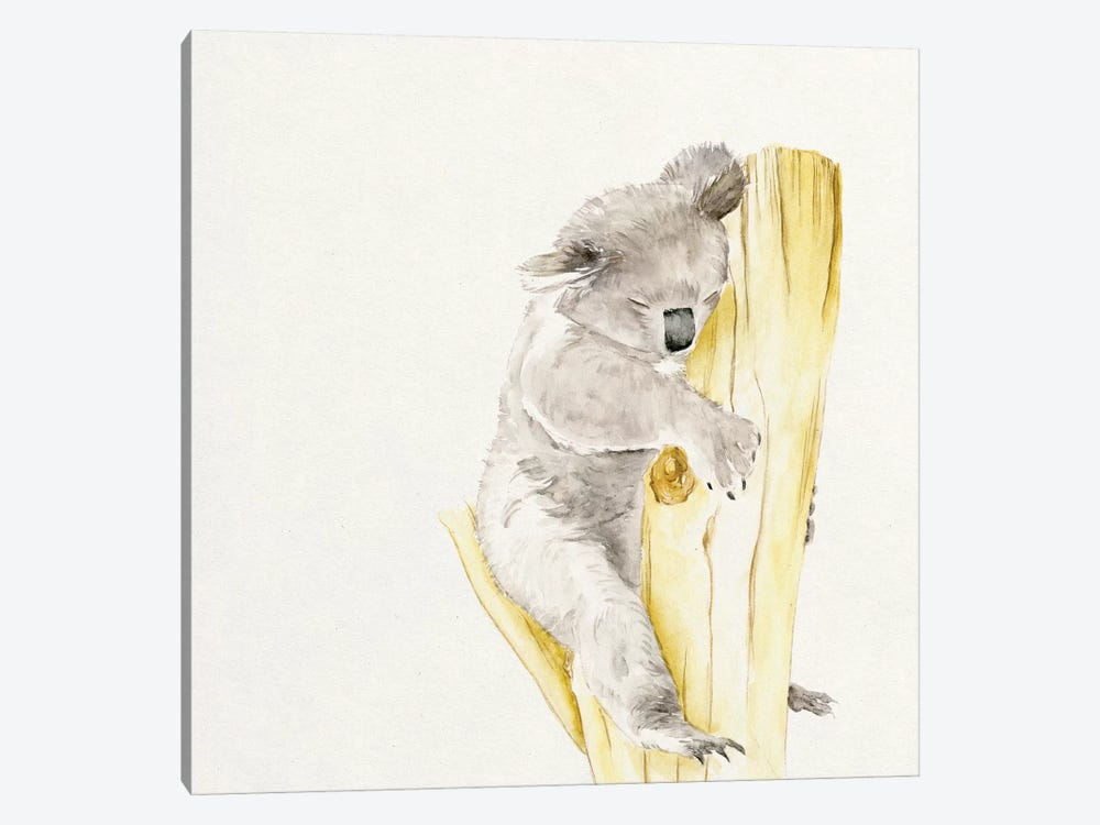 Baby Koala I 1-piece Canvas Wall Art