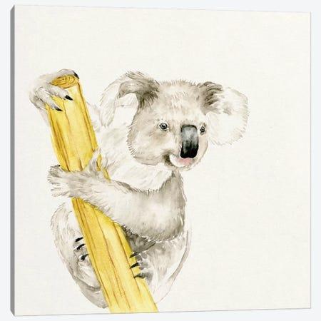 Baby Koala II Canvas Print #WNG54} by Melissa Wang Canvas Art Print