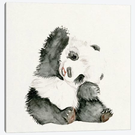 Baby Panda I Canvas Print #WNG55} by Melissa Wang Art Print