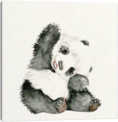 Baby Panda I Canvas Print #WNG55