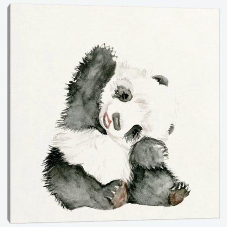 Baby Panda I Canvas Print #WNG55} by Melissa Wang Art Print