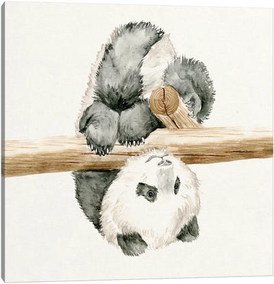 Baby Panda II Canvas Print #WNG56