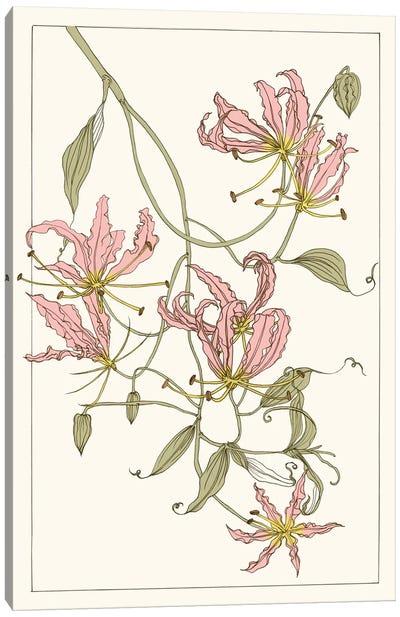 Botanical Gloriosa Lily II Canvas Print #WNG58