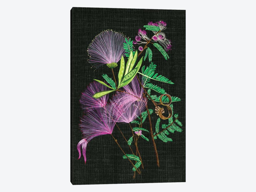Calliandra Surinamensis II by Melissa Wang 1-piece Canvas Art