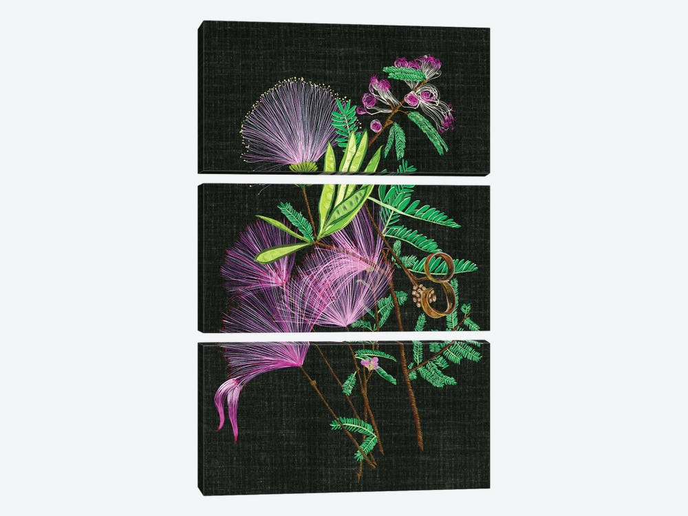 Calliandra Surinamensis II by Melissa Wang 3-piece Canvas Artwork