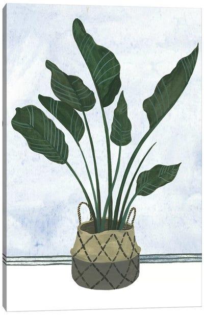 Mes Plants III Canvas Art Print