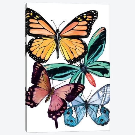 Butterfly Swatches I Canvas Print #WNG690} by Melissa Wang Art Print