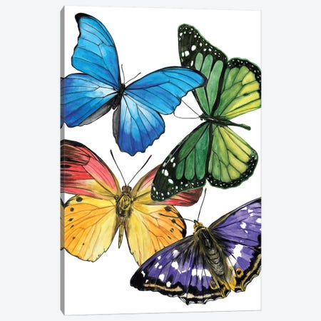 Butterfly Swatches II Canvas Print #WNG691} by Melissa Wang Art Print