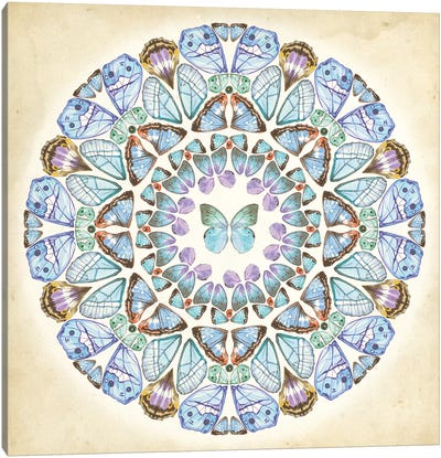 Prosperity Mandala III Canvas Art Print